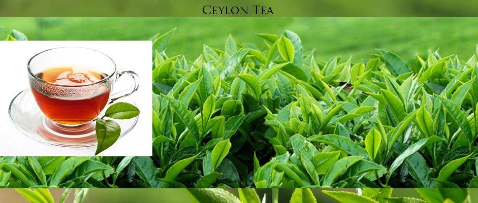 Ceylon Tea Festival with Afternoon High Tea