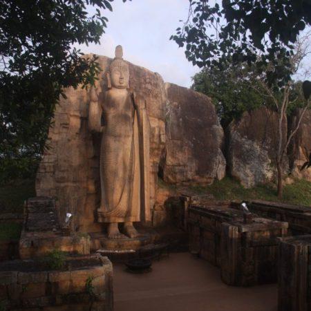 The Avukana Buddha statue at dawn. Image credit: Radhika Wijesekera
