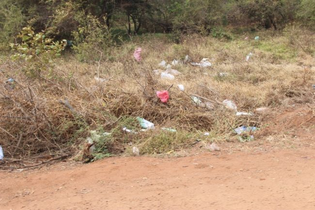 Garbage and polythene bags strewn around pathways inside the national park. Image courtesy EFL