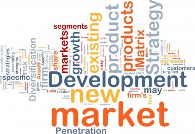 new-market-development-word-cloud