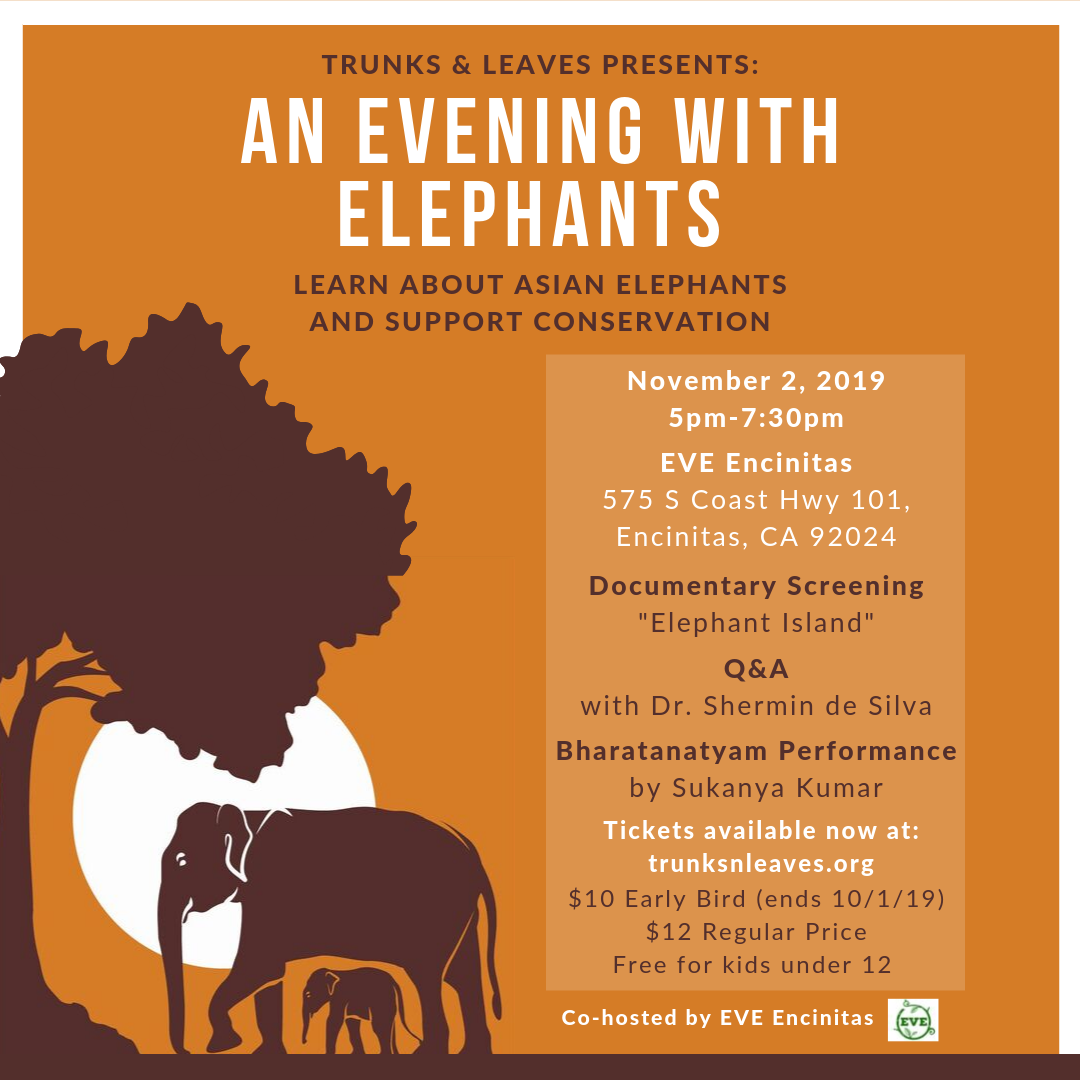 An Evening with Elephants - Learn About Asian Elephants  & Support Conservation