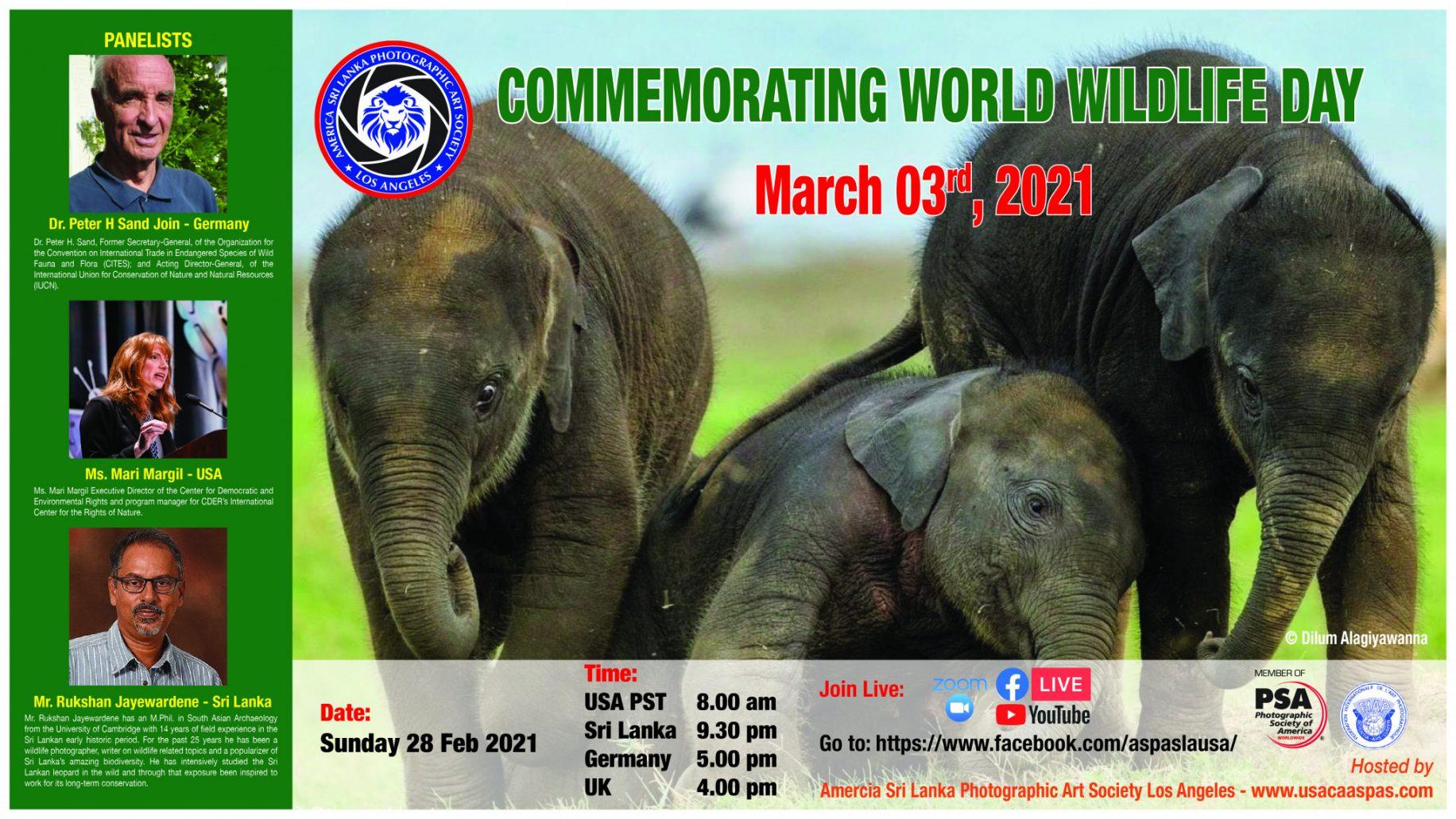 World Wildlife Day-01